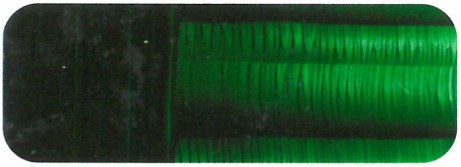 51-69 Verde vejiga