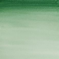 24 Verde de hooker oscuro