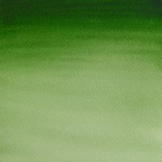 25 Verde de hooker claro