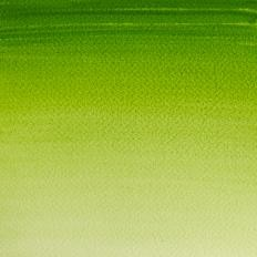 26 Verde vejiga
