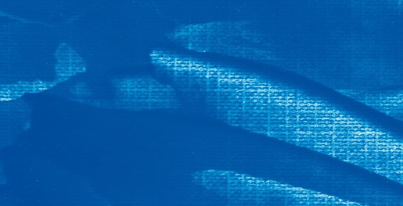 936- Fluo Azul